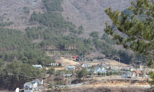 가리왕산에도-봄은-온다.jpg