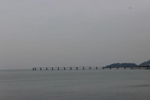 강릉과-커피1.jpg