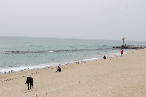 해변의-추억.jpg